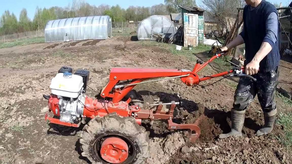 máy cắt cỏ dầu