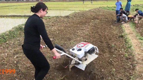 máy xới đất mini