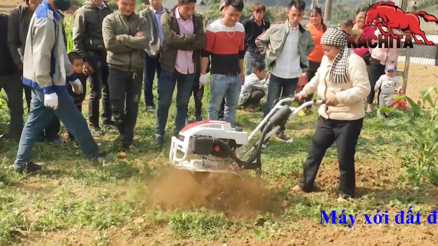 máy xới đất dễ đầu tư