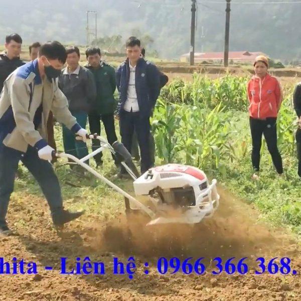 máy xới đất cỡ nhỏ