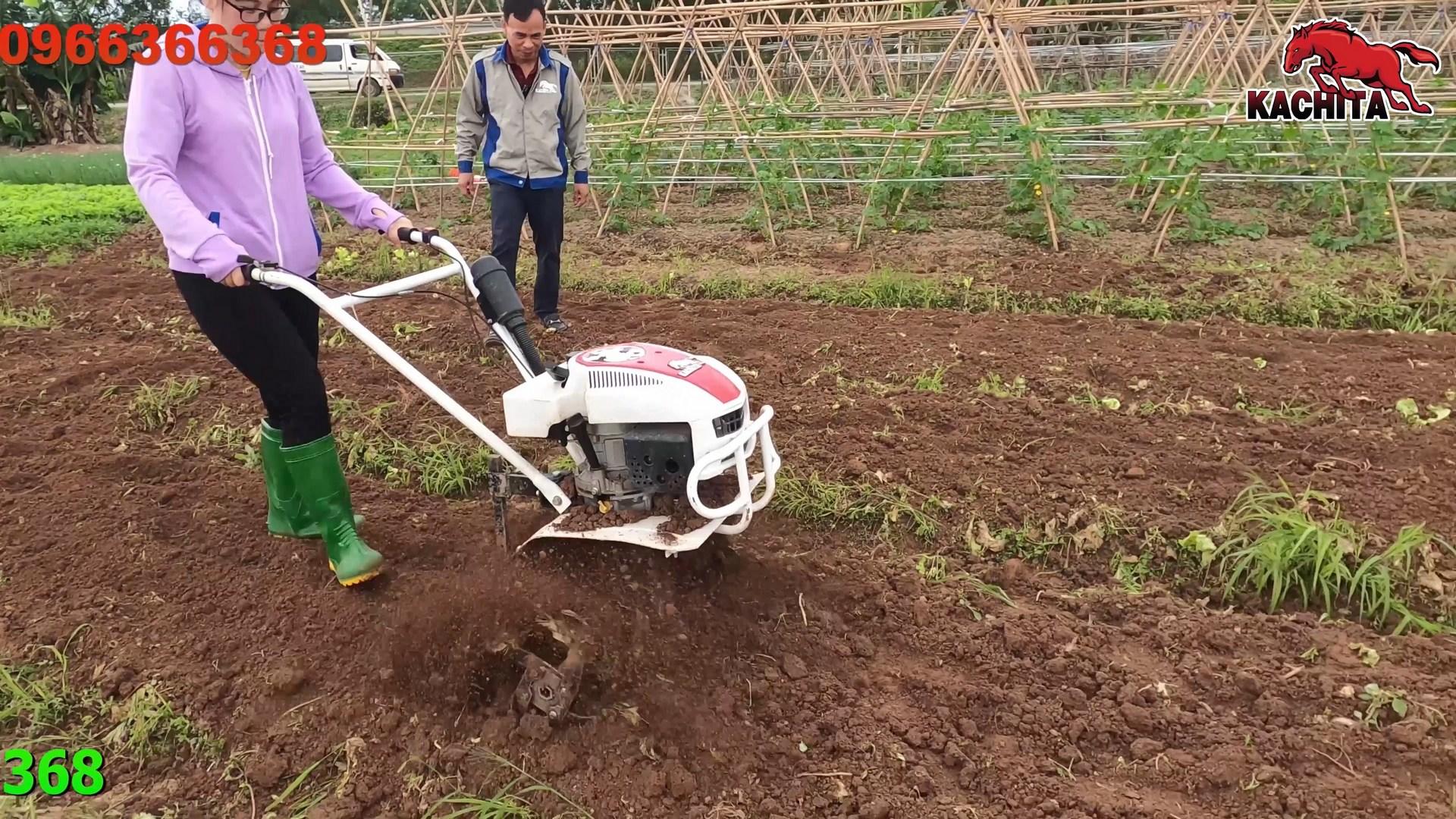 Xới vườn rau bằng máy xới đất kachita 3tgq2