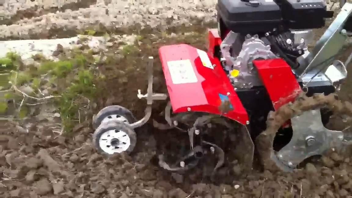 máy làm đất mini