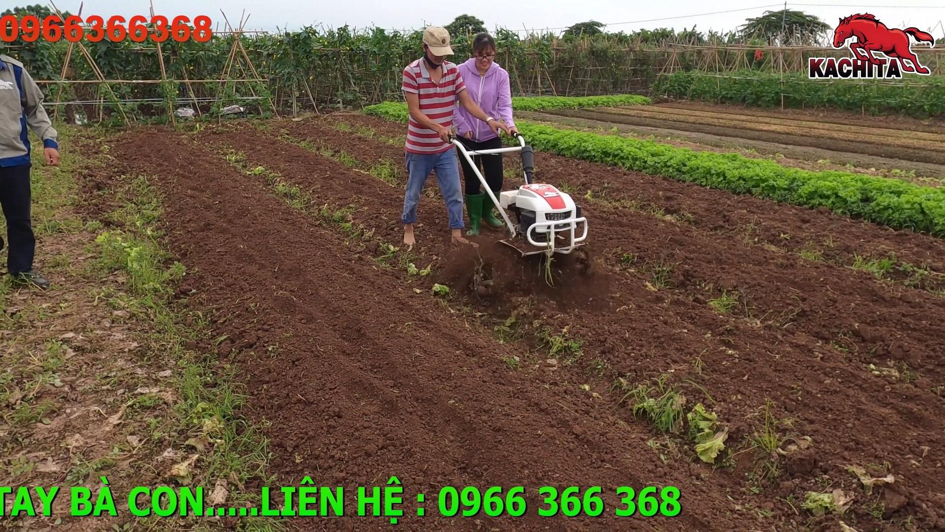 máy xới đất mini dùng cho vườn rau màu