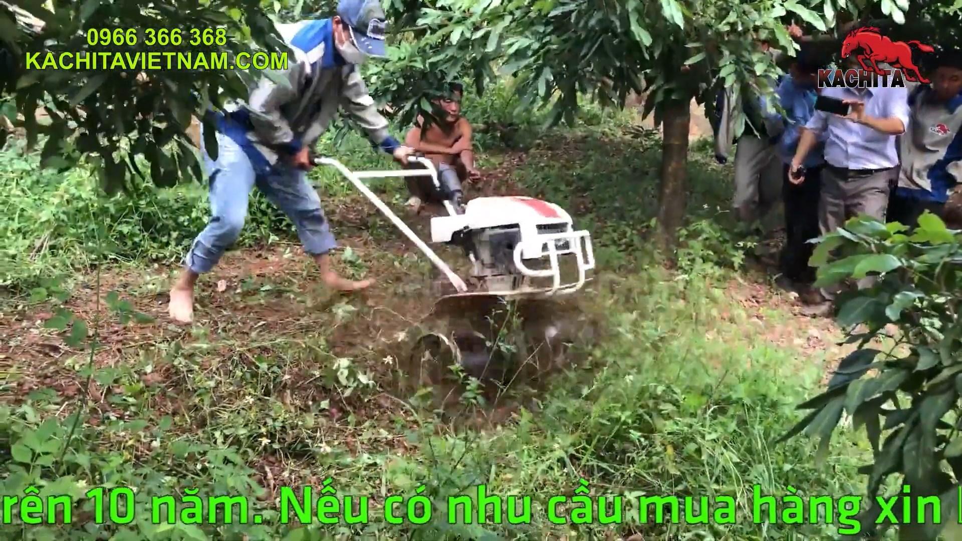 xạc cỏ bằng máy xới đất trong vườn cây