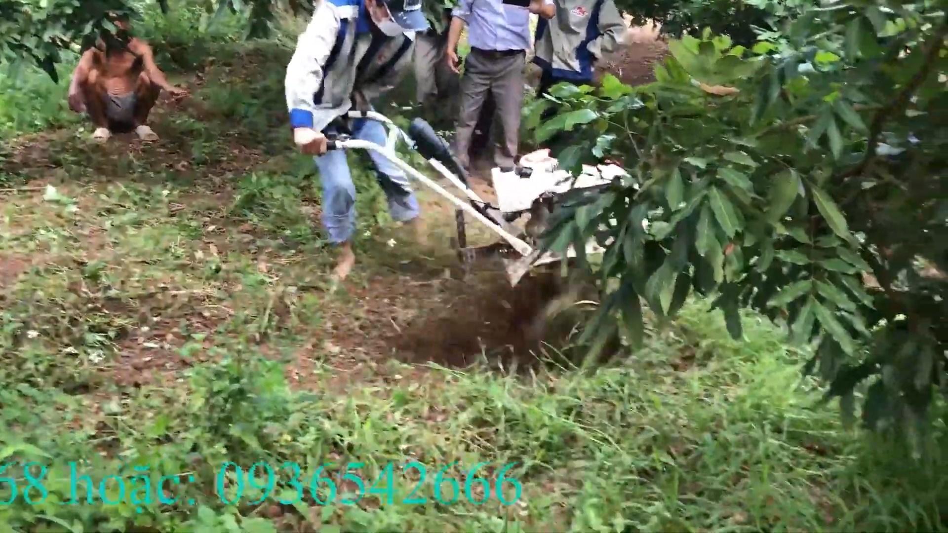 xạc cỏ trong vườn đất cứng bằng máy xới đa năng kachita