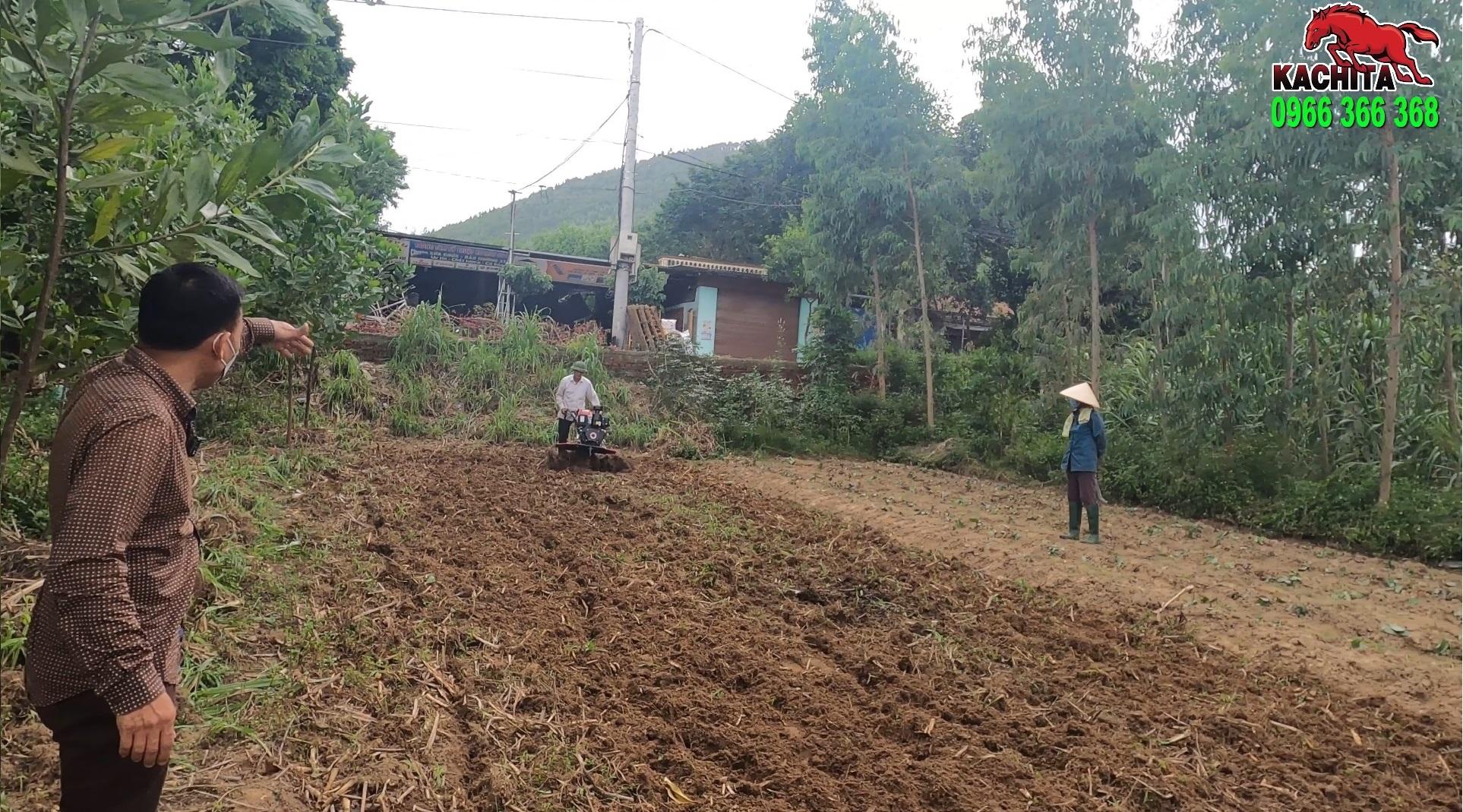 xới ruộng mía đất cứng tại Vĩnh Phúc bằng máy 188